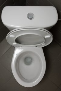 toilet-image-open-clean-button